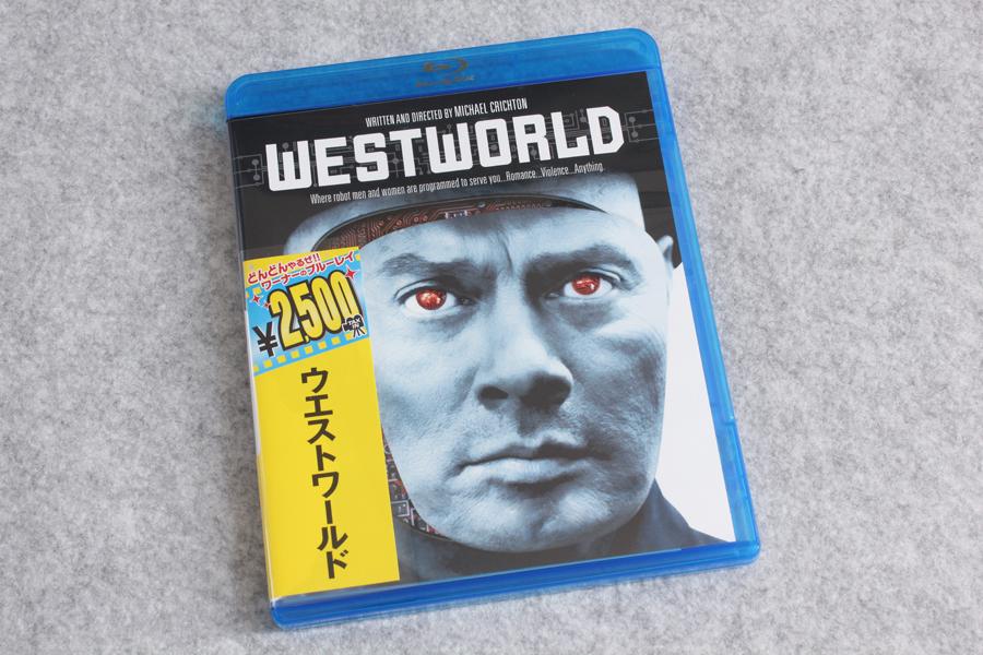 2020-02-27-WESTWORLD1973-1.JPG